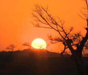 MADAGASCAR, lumières partagées - Les Enquêtes d'Ushuaïa TV