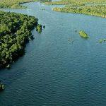Journée Mondiale de la Biodiversité 27 mai 2021 IRD RFI